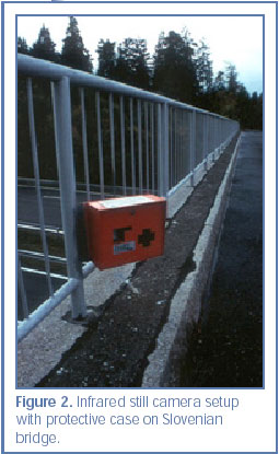 Figure 2. Infrared still camera setup with protective case on Slovenian bridge.