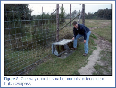 Figure 8. One-way door for small mammals on fence near Dutch overpass.