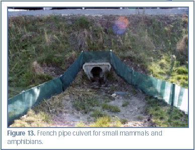 Figure 13. French pipe culvert for small mammals and