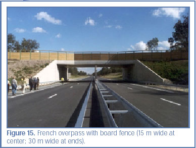 Figure 15. French overpass with board fence (15 m wide at center; 30 m wide at ends).