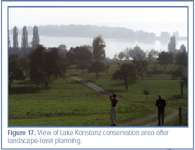 Figure 17. View of Lake Konstanz conservation area after landscape-level planning.