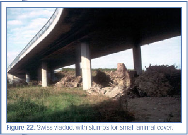 Figure 22. Swiss viaduct with stumps for small animal cover.