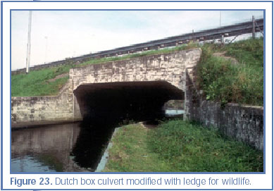 Figure 23. Dutch box culvert modified with ledge for wildlife.